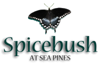 Spicebush at Sea Pines Logo